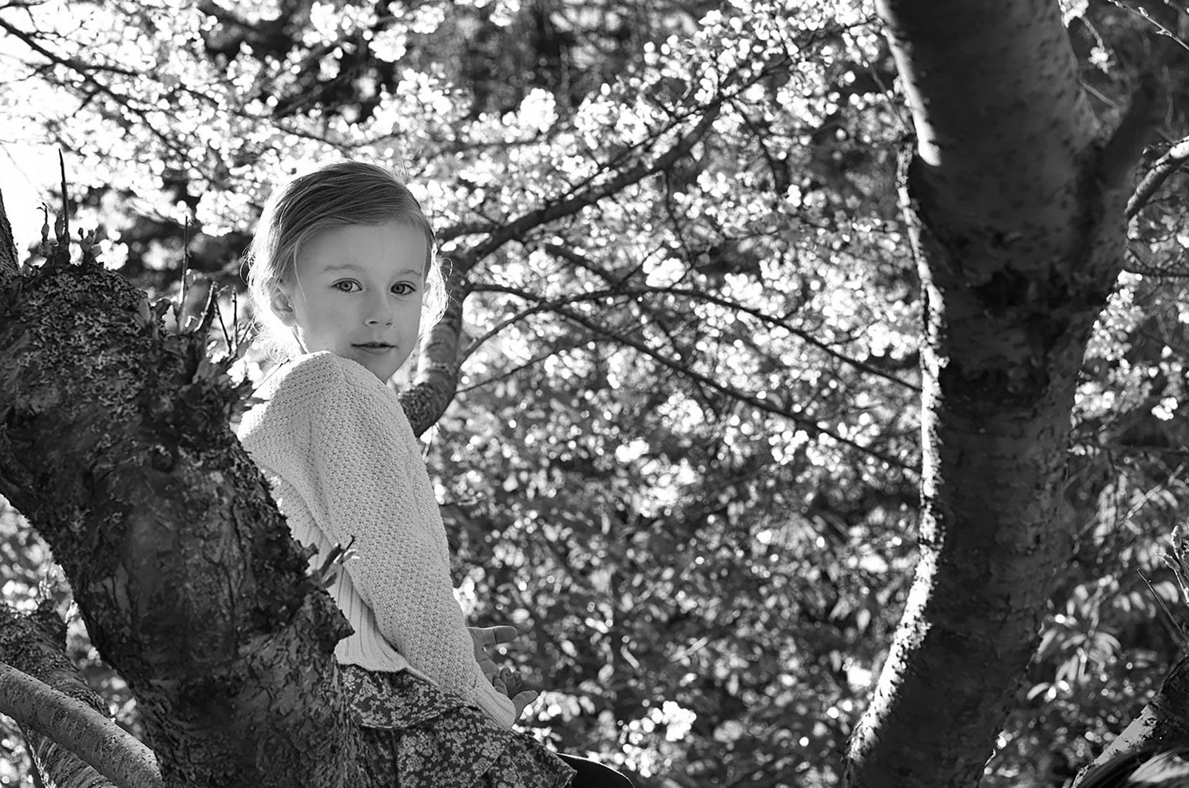 APF_Girl-in-the-Tree1