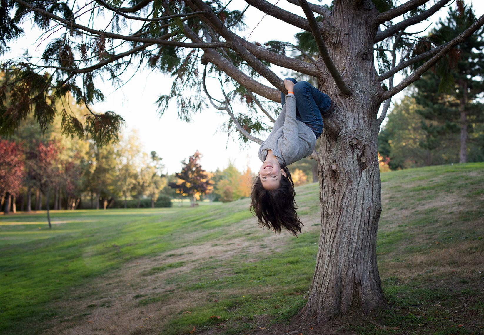 Girl-in-a-Tree-